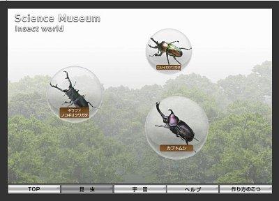 Canon Insekten