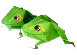 Origami frosch nummer zwo - Frosch auf englisch ...