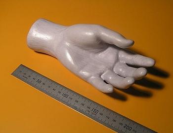 3-D-Modell einer Hand aus Papier